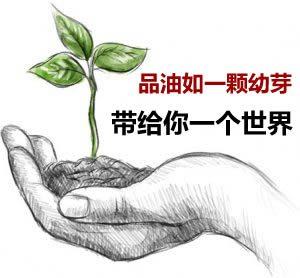 品油如一颗幼芽带给一个世界
